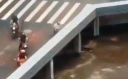 どうなっているの?車が橋の下へ次々と消えていく動画が不思議