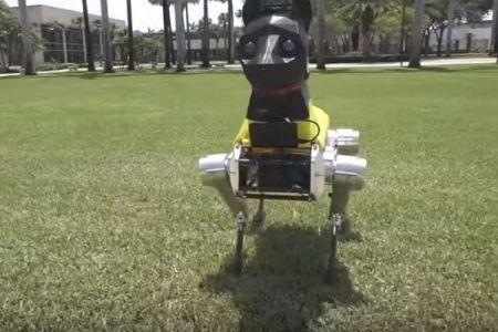 AIにより子犬のように学習し成長していく、米で開発された犬型ロボットがユニーク