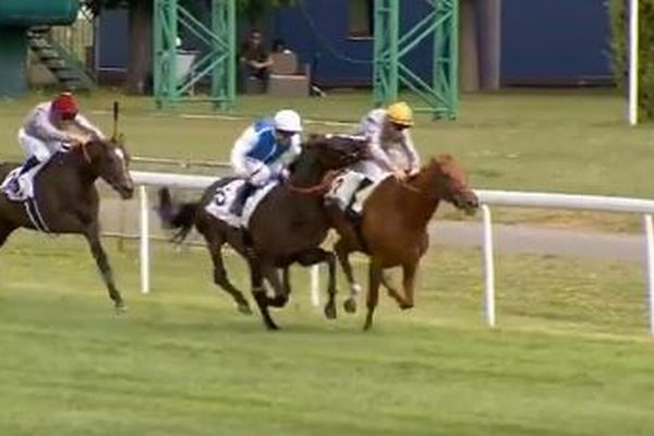 フランスで競馬のレース中、騎手が隣の馬から腕を噛まれびっくり!
