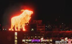 アルゼンチンのスタジアムで吠えた「炎のライオン」巨大ホログラムが見事