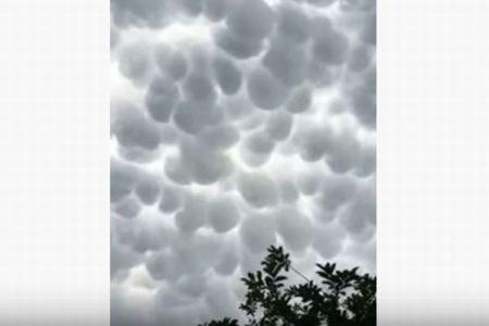 まるでタピオカのよう!丸い瘤状をした、数多くの不思議な雲が空を覆う