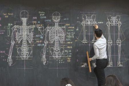 黒板に緻密な人体解剖図を描いて教える美術の先生が凄い!