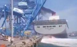韓国の港で巨大な貨物船がクレーンをなぎ倒す、事故の映像が衝撃的
