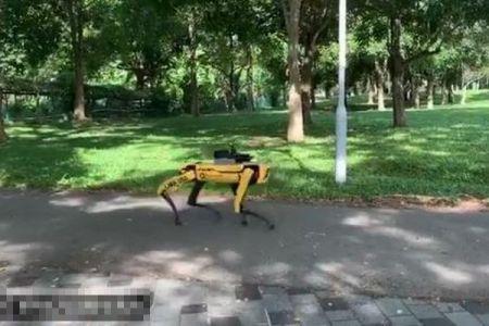 シンガポールの公園に犬型ロボットを導入、感染防止を人々に呼びかけパトロール