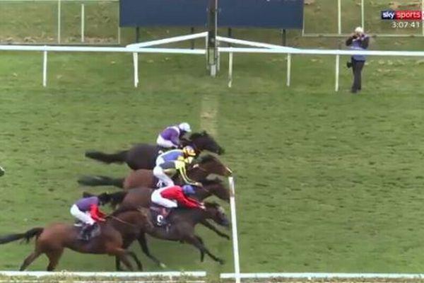 どれが1位か見分けがつかない!英の競馬で4頭がほぼ同時にゴール【動画】