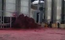 ワ、ワ、ワインが!スペインにあるワイナリーのタンクから大量に噴出