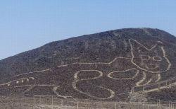 ペルーのナスカで新たなネコの地上絵を発見、紀元前500年から紀元後200年に描かれた可能性