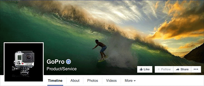 Facebook Page Gopro
