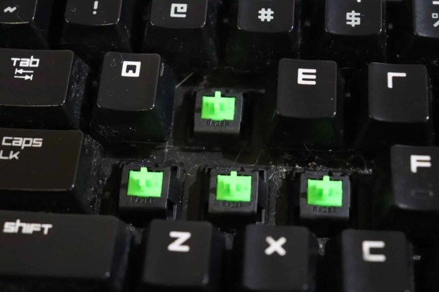 Green switches from a 2014 Blackwidow Tournament Edition