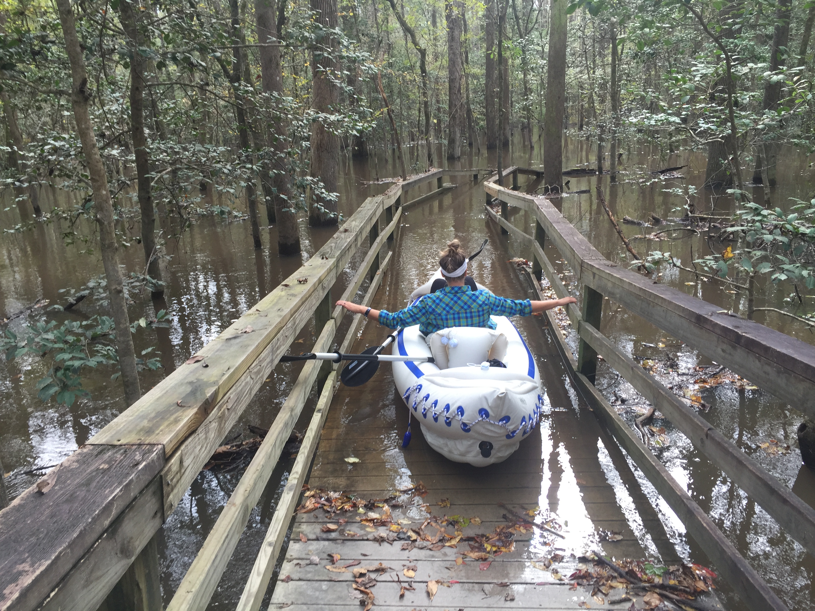 VIDEO: Congaree National Park
