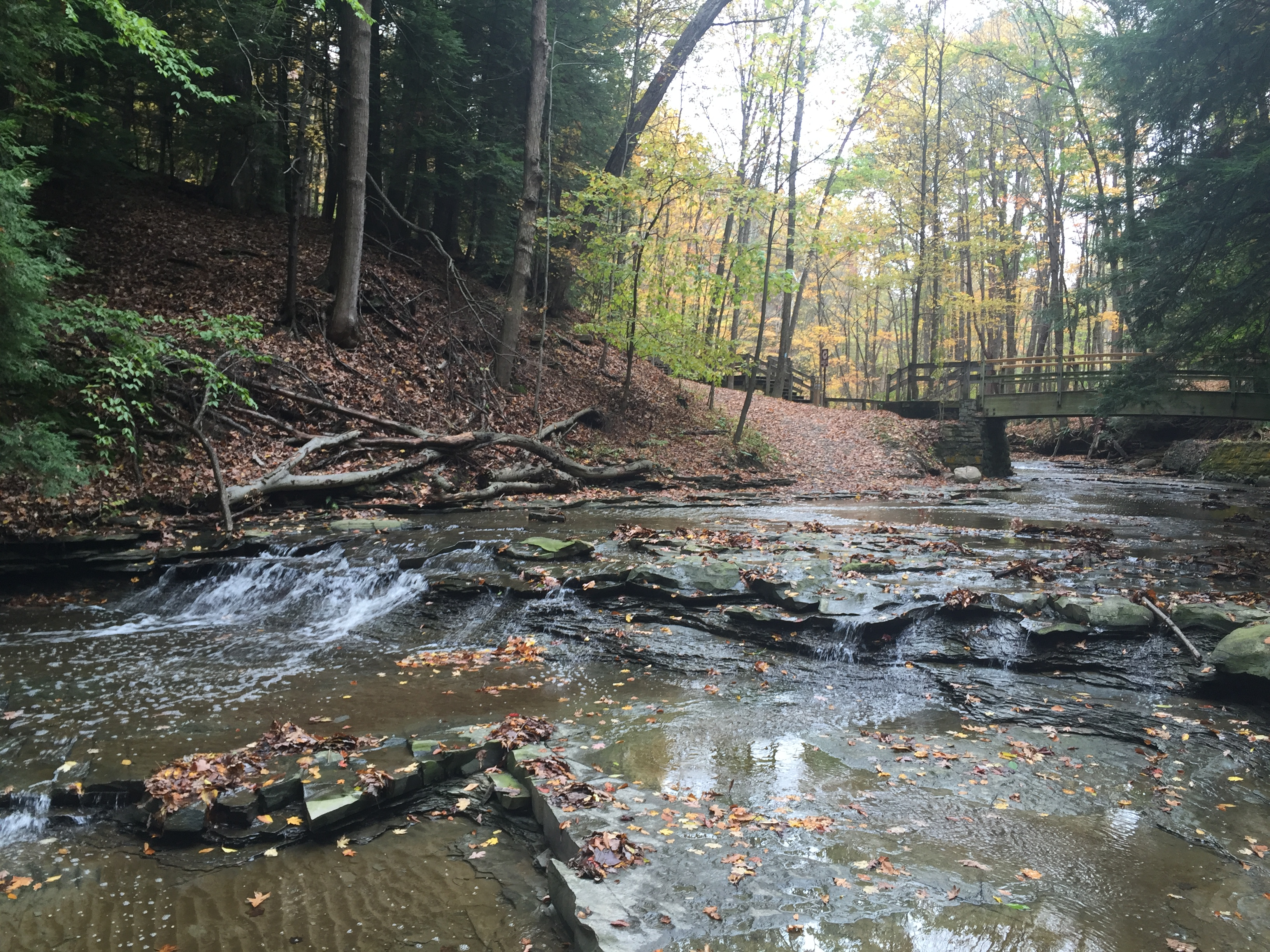 VIDEO: Cuyahoga Valley National Park