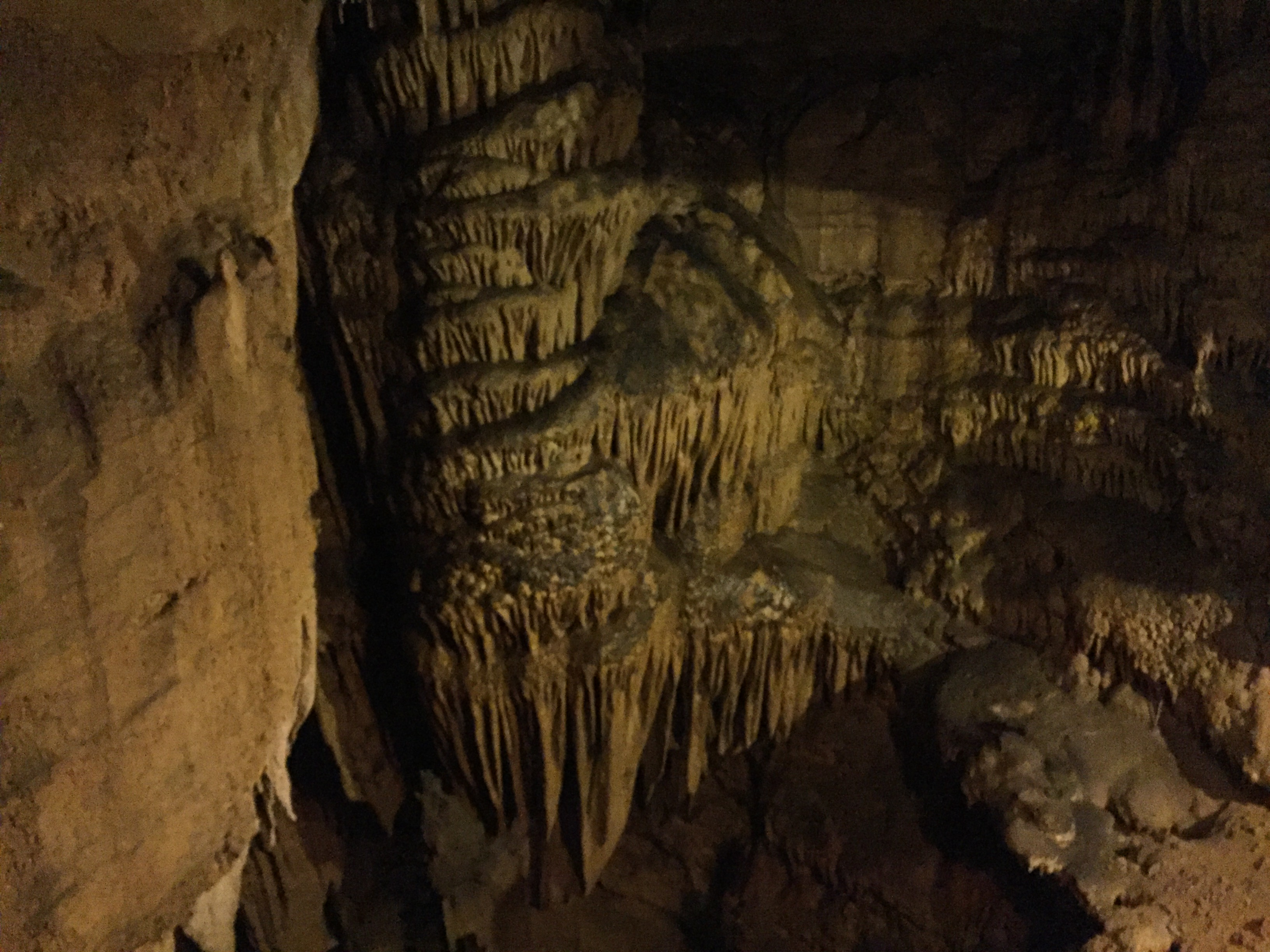 VIDEO: Mammoth Cave National Park
