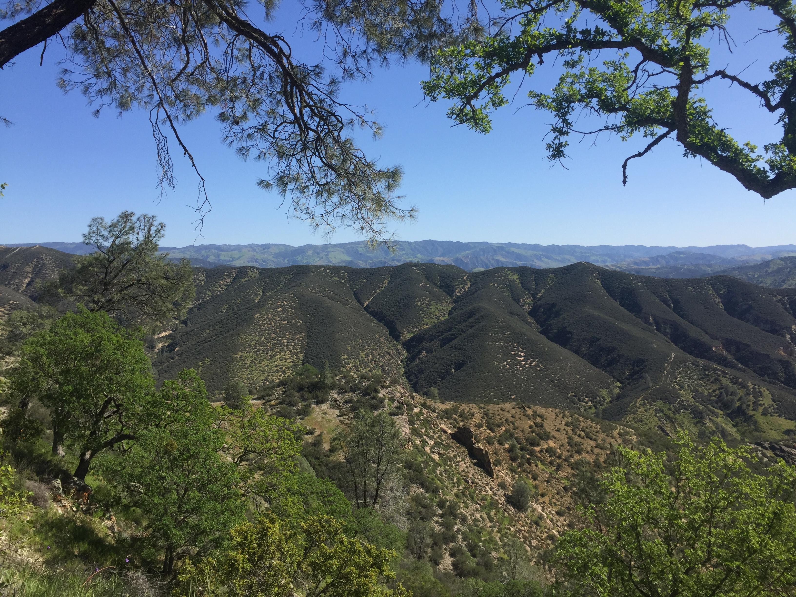 Pinnacles National Park Video