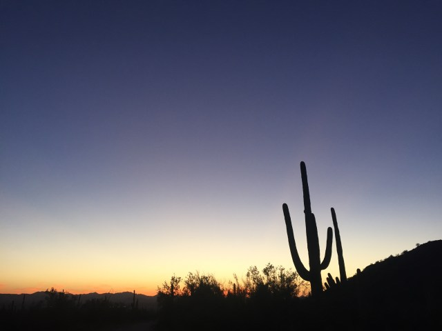 Saguaro National Park Video