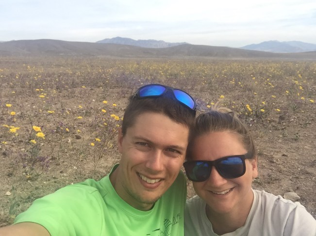 Death Valley Superbloom Tips