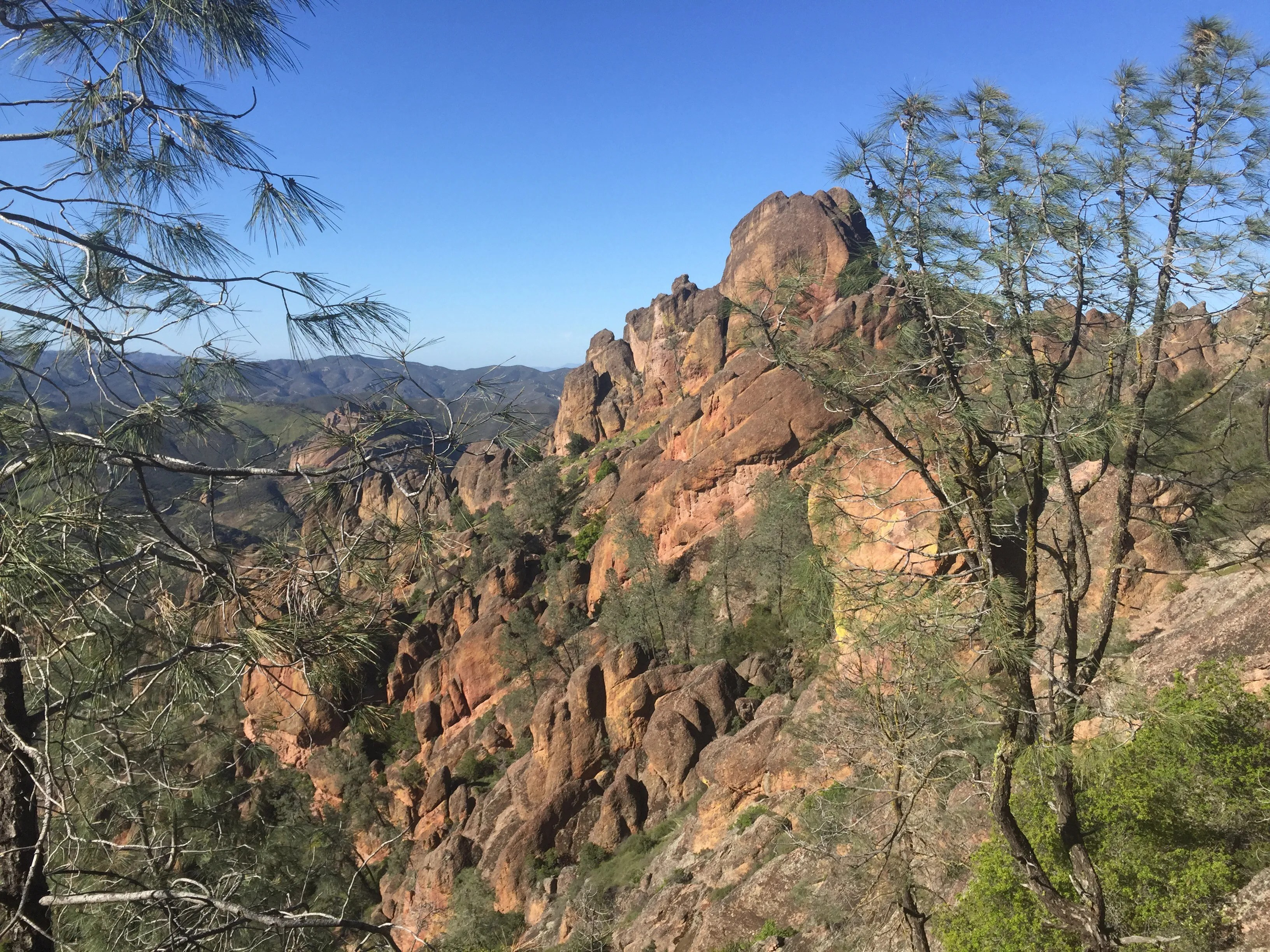 Switchbacks Episode #9: Parks that Live in the Shadows, ft. Pinnacles and Biscayne