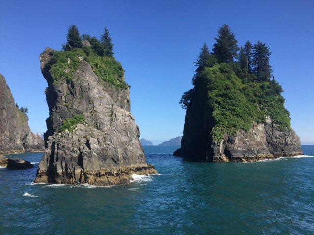 Kenai Fjords National Park By Water By Land Switchback Kids