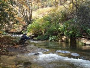 Crabtree Creek