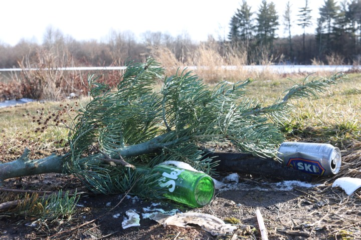 Ski bottles and cans lay on the ground under a branch in early spring.