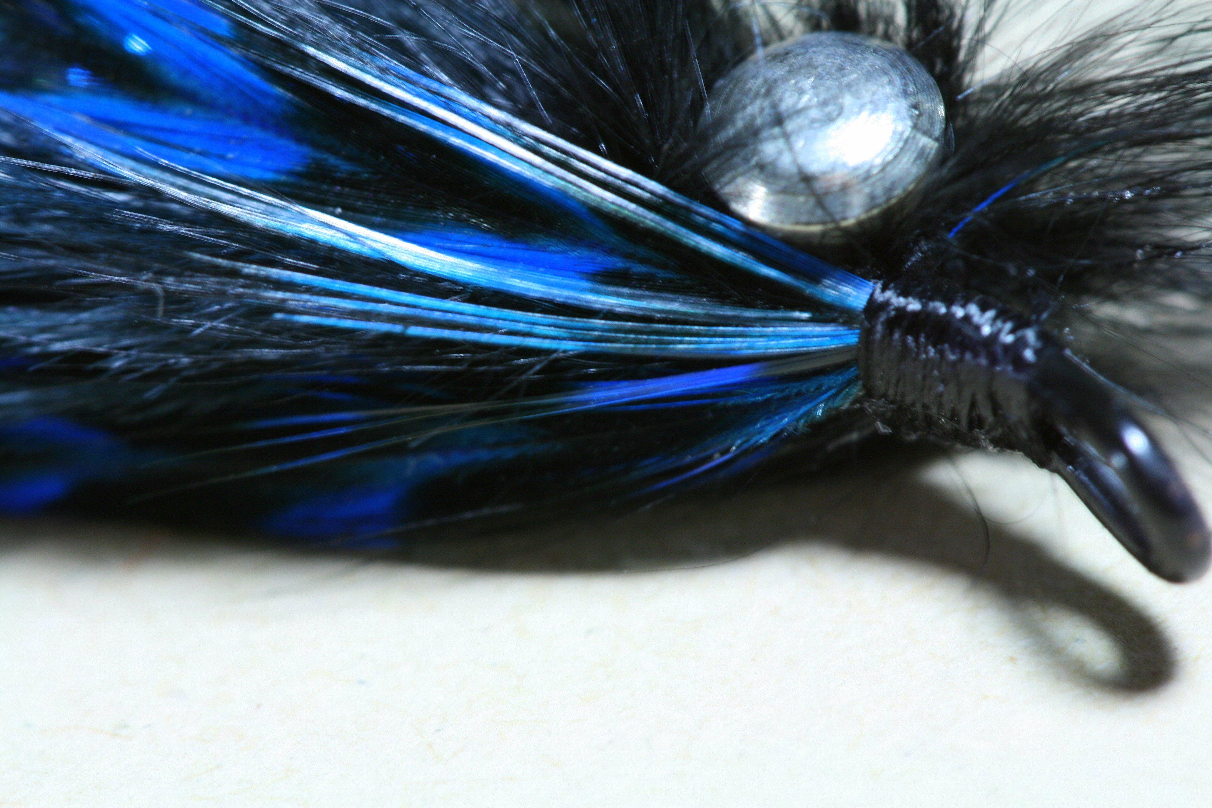 Intruding on the Classics (Black & Blue Intruder w/ stinger)~T. Muncy