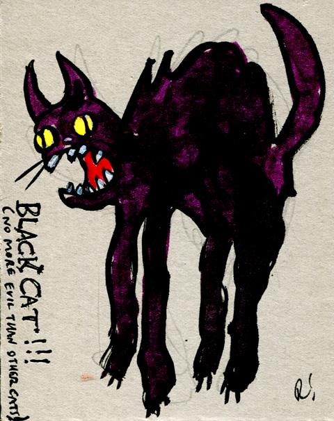 Black-cat-480