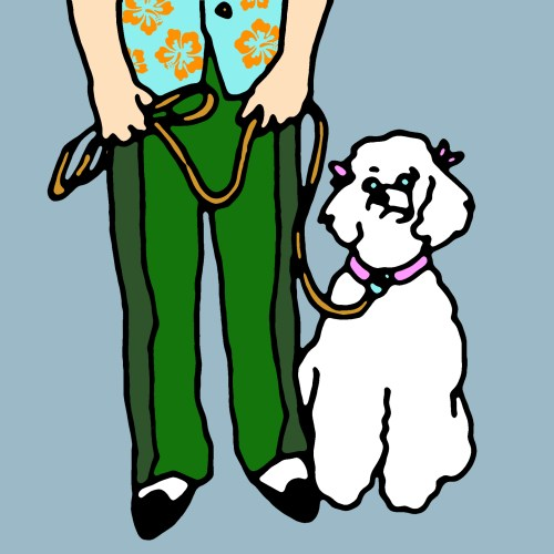 Man in aloha shirt with poodle drawing by Rob Elliott