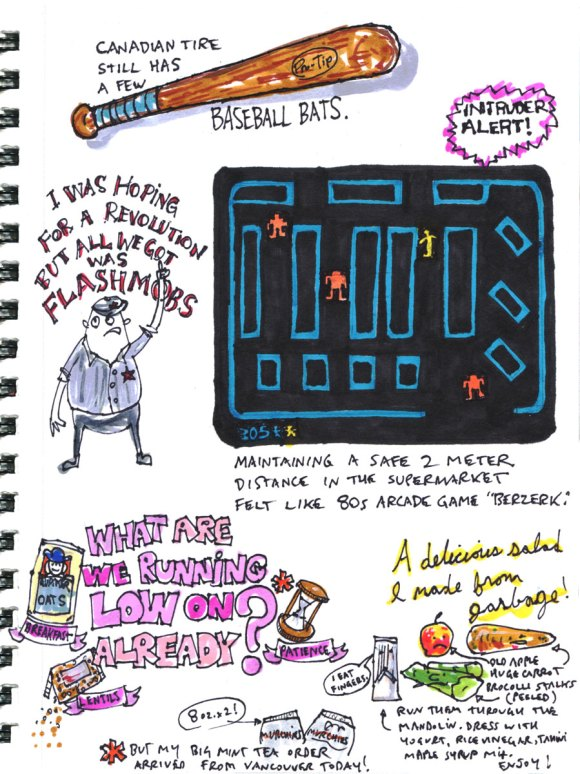 My Pandemic Diary page 14:berzerk,videogame,revolution,baseball bat,cooking