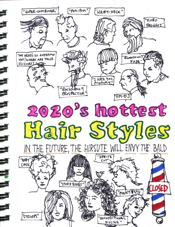 My Pandemic Diary page 18:2020s hottest hairstyles