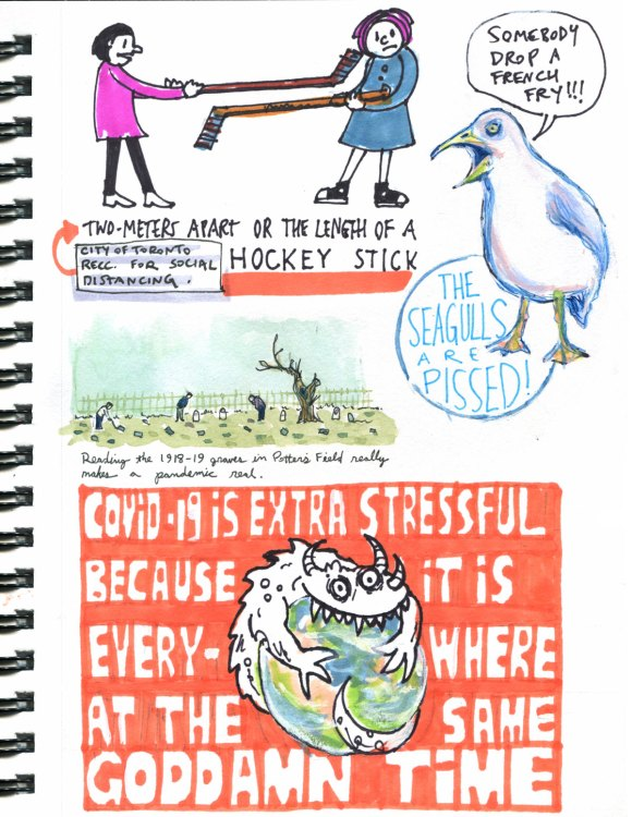 My Pandemic Diary page 20:hockey stick,prospect cemetery,1919,seagull,stress