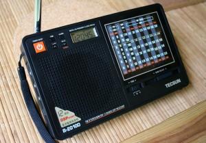 The Tecsun R-2010D (click to enlarge)