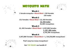mosquito math