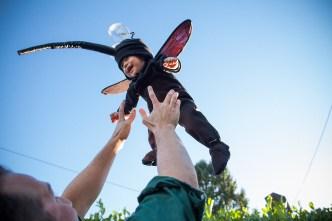 baby-mosquito-costume