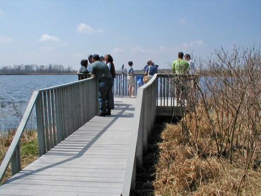 Topinabee Lake Preserve