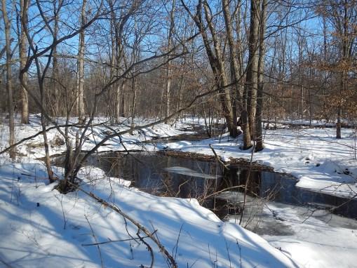 Dayton-Willard Wildlife Preserve