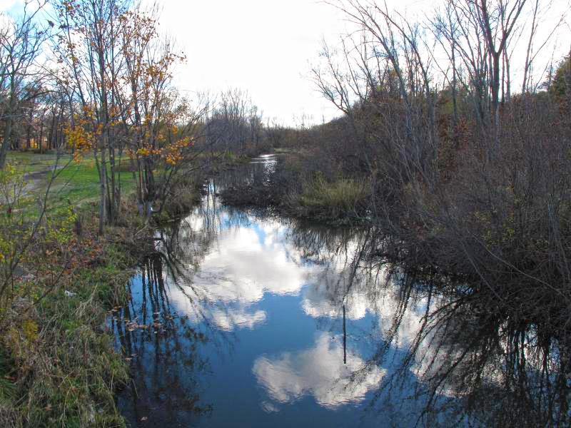A Little Love for Ox Creek