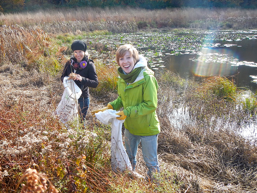 Autumn seed collecting at Hidden Pond Preserve in Barry County.