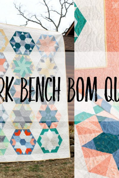 Block of the month clubs are so much fun, and here is a modern BOM quilt pattern from Jaybird Quilts! See the beautiful variations on classic blocks with this modern pastel quilt. #quilting #quilts