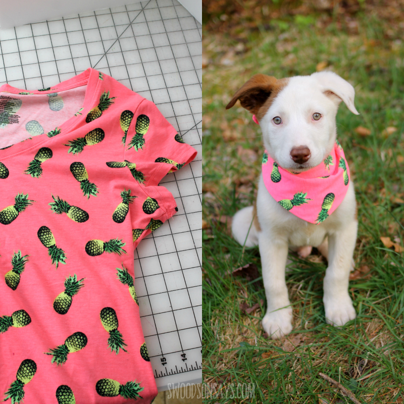 upcycle tshirt to dog scarf
