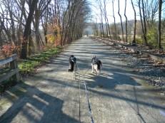 November trail