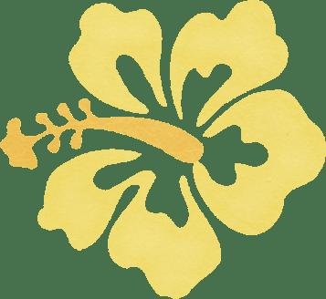 dtd_yellowhibiscus