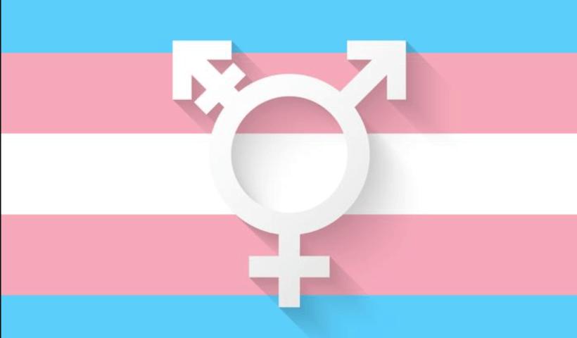 bandera y símbolo de Transexualidad