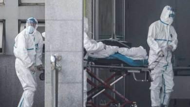 """صورة تركيا تكشف سبب تقلص أعداد الإصابات بـ """"فايروس كورونا"""" لديها مبكرأ"""