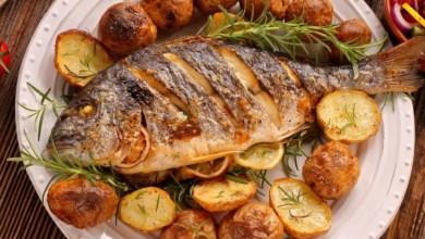 صورة وزير تركي يطلب من المواطنين الإكثار من تناول السمك.. ما السبب!