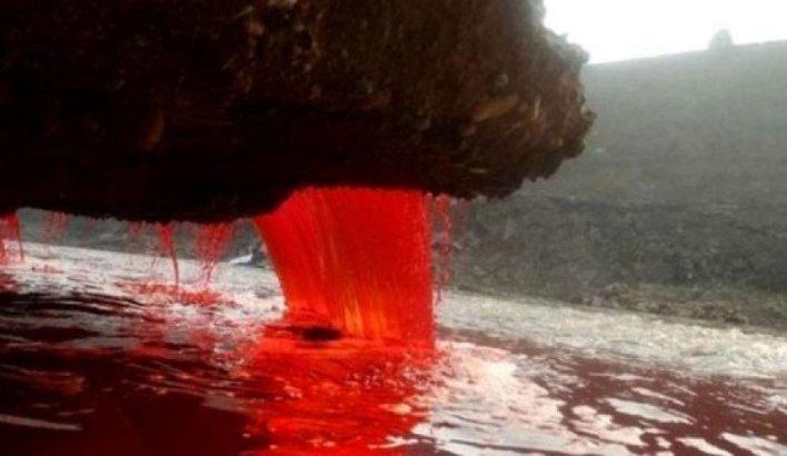 شلالات الدم