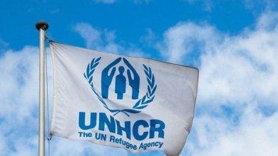 صورة بيان هام من المفوضية السامية لشؤون اللاجئين موجه للاجئين في تركيا