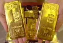 245154 - انخفاض بسيط في أسعار الذهب في تركيا