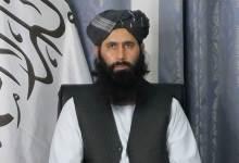 نعيم طالبان - المحكمة الدستورية العليا تعلن أسماء المرشحين لخوض انتخابات الرئاسة