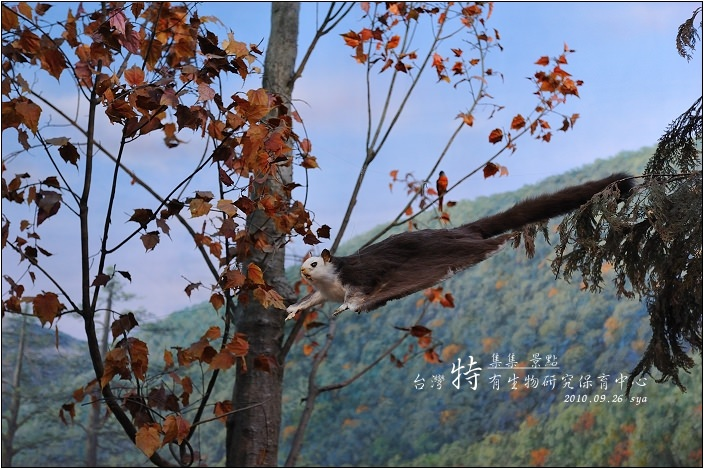 台灣特有生物研究保育中心