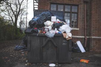 Прибирання, вивезення та утилізація домашнього (побутового) сміття