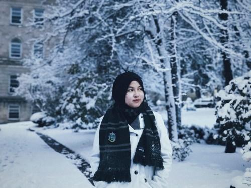 Snow in Madison, Winter Wonderland, Wisconsin